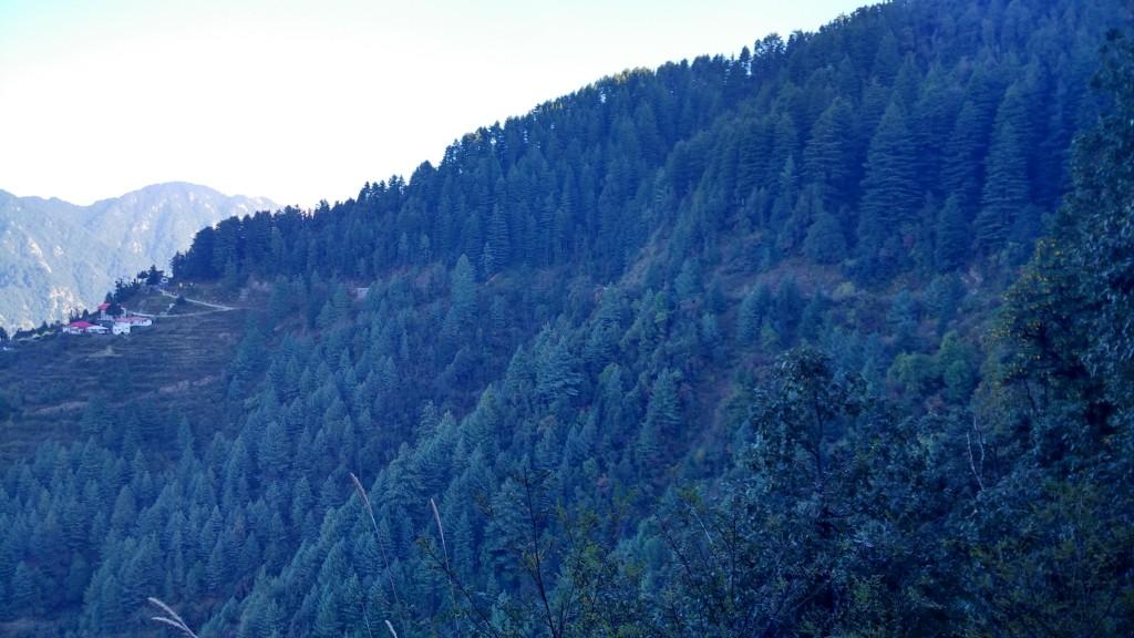 The Blue Trail - Ravikant Sahoo (LT Howden)