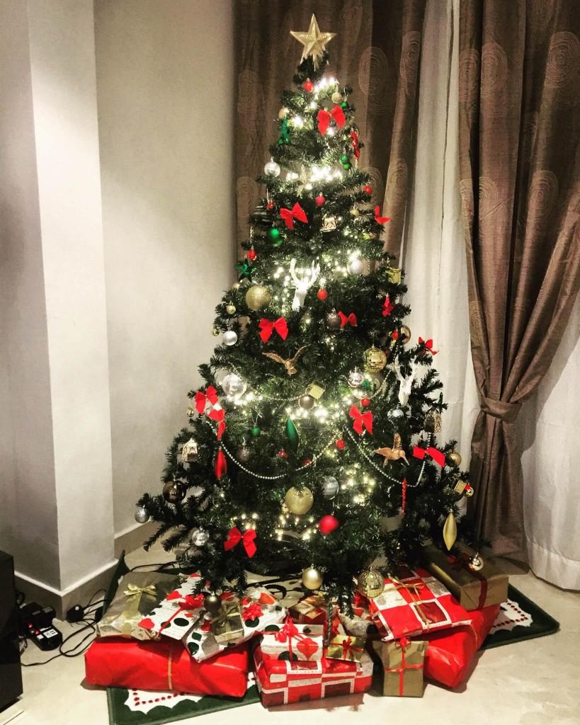 Shruti Vairagkar (LT Howden) - Christmas Celebration