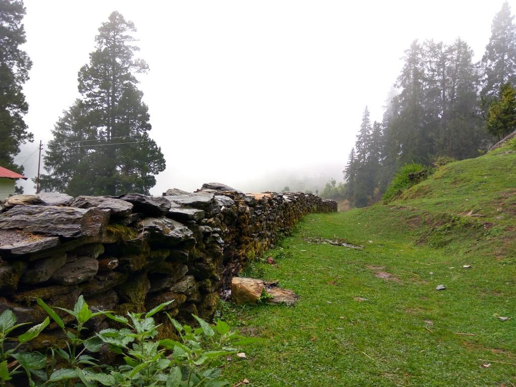 Bhagyesh Badarshahi (LT SL)