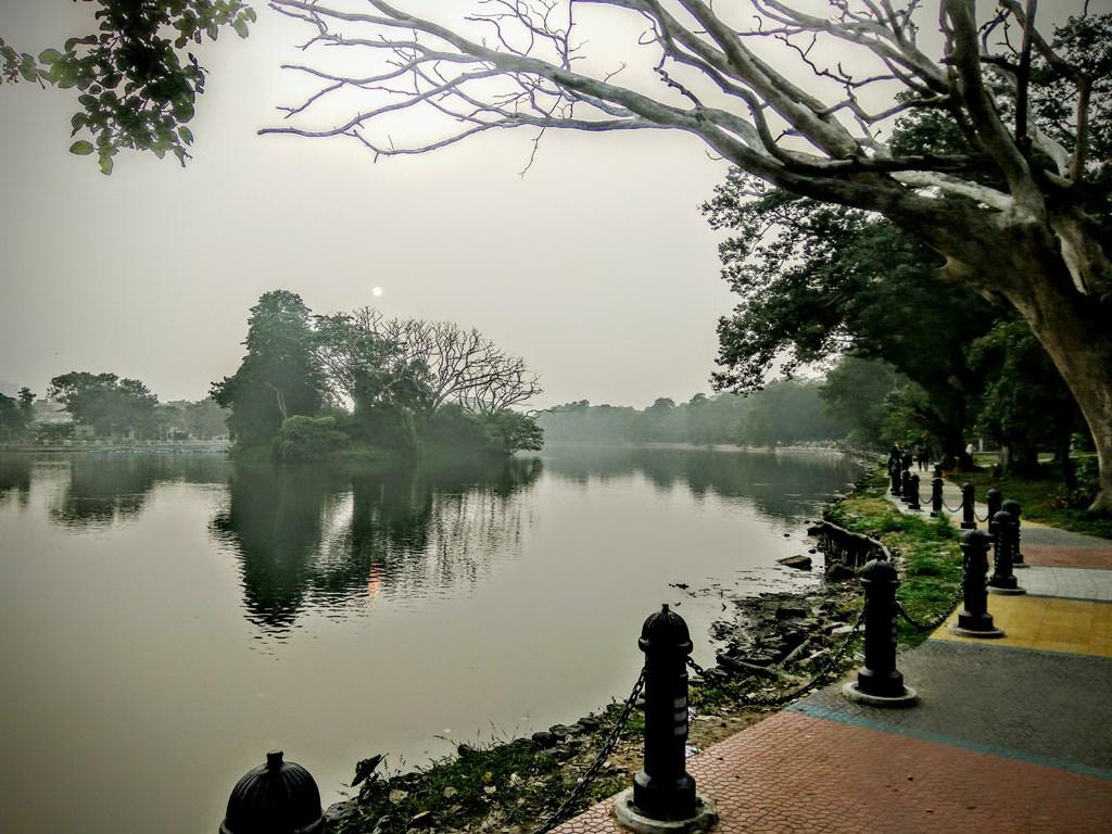 anubhav-mishra-lthe